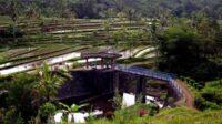 Subak Di Bali