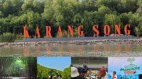 Konservasi Mangrove
